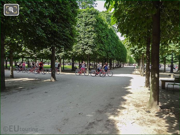 Allee Sous Couvert Sud Pathway Inside Jardin Des Tuileries Looking North