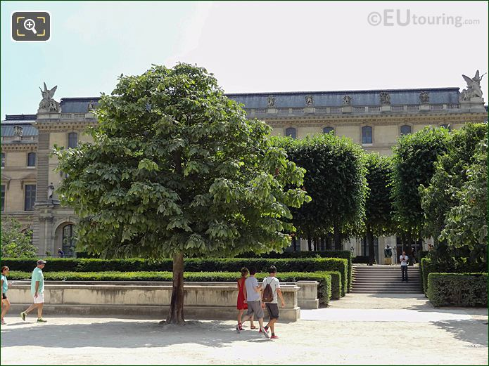Trees And Hedges In Tuileries Gardens Looking South, South West