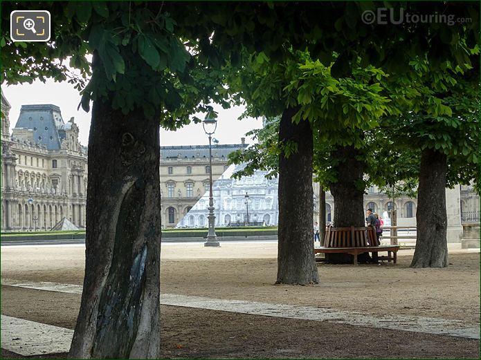 Trees In Tuileries Gardens Looking East