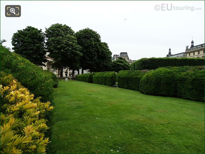 Boxwood Hedges In Jardin Du Carrousel Looking Easterly
