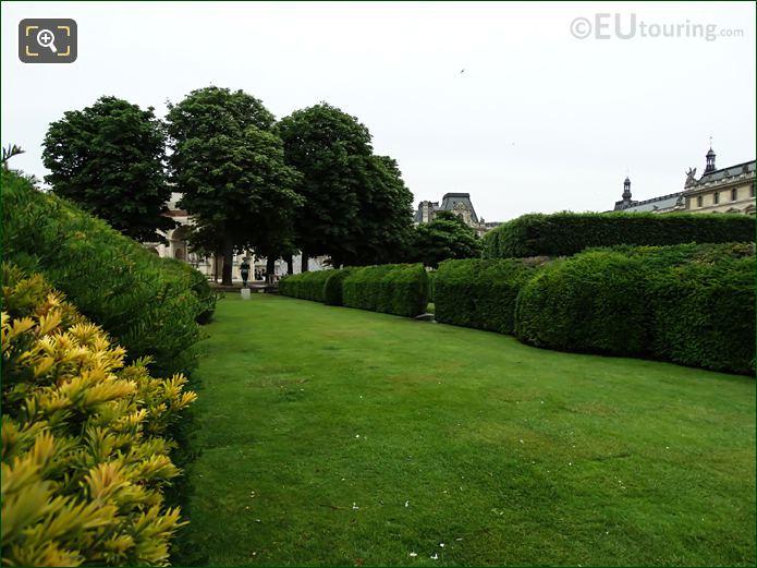 Boxwood Hedges In Jardin Du Carrousel Looking Easterly